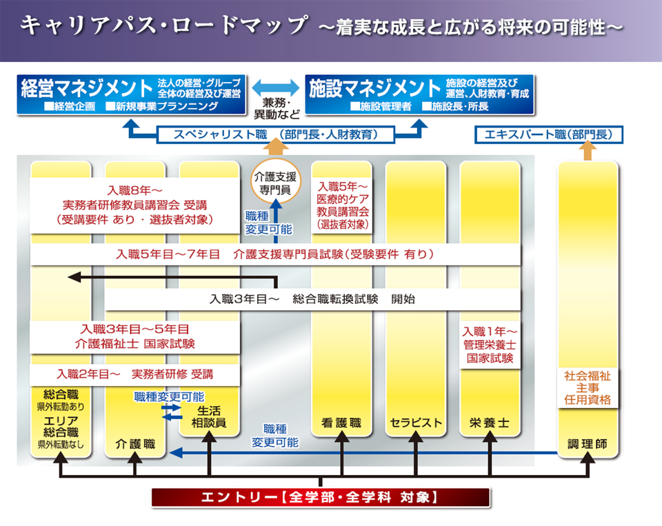 キャリアパス・ロードマップ